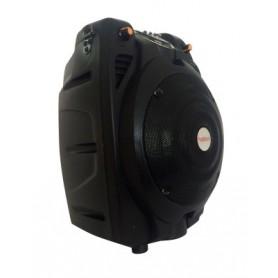 CASSA ACUSTICA AMPLIFICATA 100W max con batteria - bluetooth - SD-USB - radio