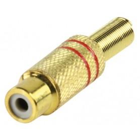 CC108R - SPINOTTO RCA FEMMINA DORATA DIAM 4,8 mm